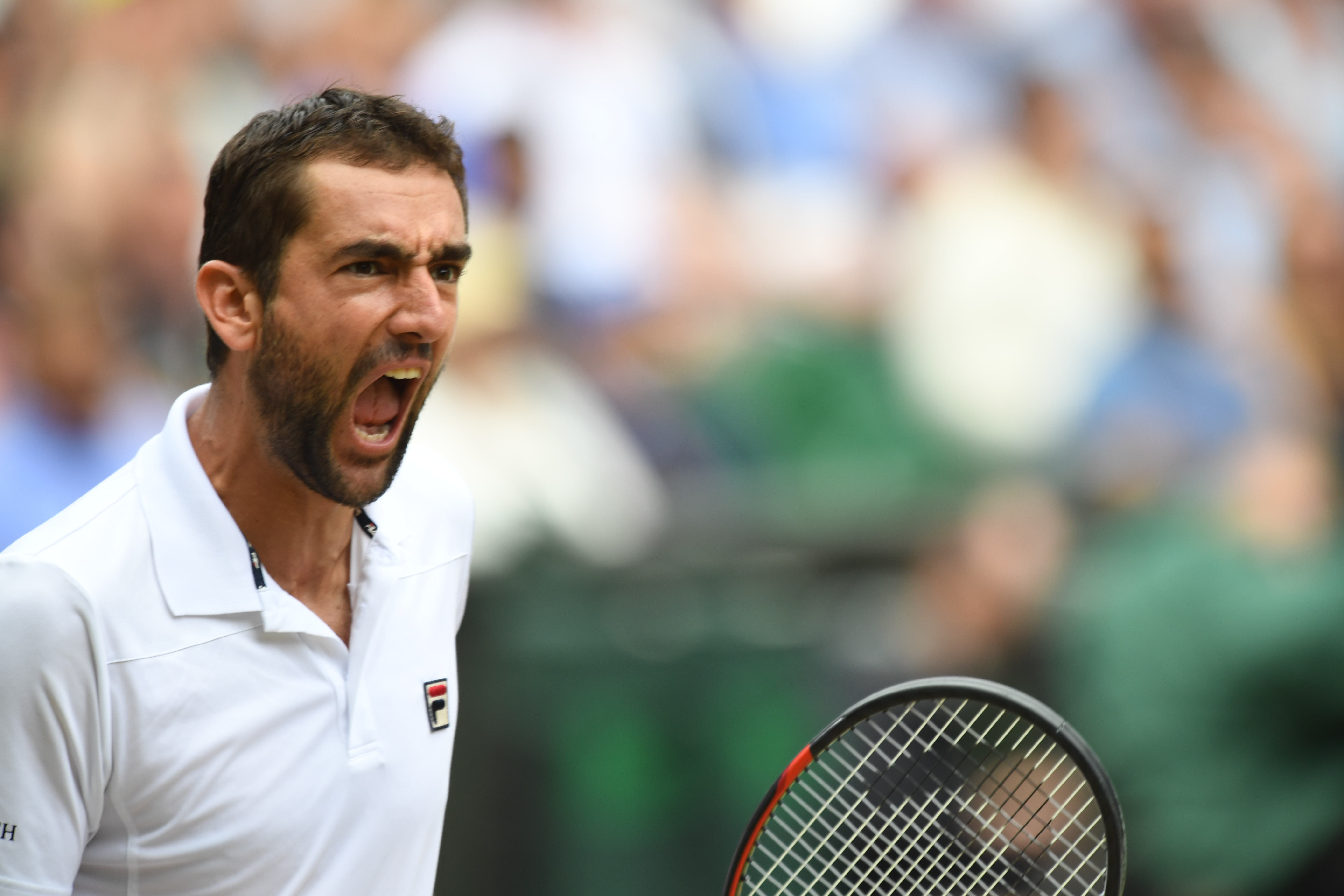 Qui est Marin Cilic, l'homme qui défie le mythe Federer ?  - Wimbledon - Tennis