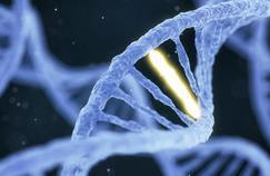 «Les fantasmes ne doivent pas parasiter les avancées de la médecine génomique!»