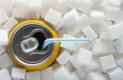 Le sucre des boissons, pas des aliments, fait grossir