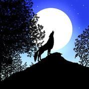 Les contes de la nuit - Bande annonce