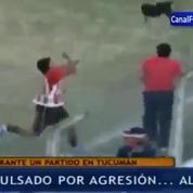 Football: Expulsé pour avoir ... maltraité un chien