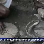 En Inde, un festival de charmeurs de serpents