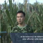 Une Chinoise rescapée après avoir passé 15 jours au fond d'un puits