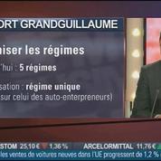 Laurent Grandguillaume, député PS de Côte d'Or, auteur du rapport sur la réforme de l'auto entrepreneuriat, dans Le Grand Journal 3/4