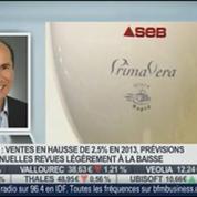 Le Groupe SEB enregistre un chiffre d'affaires en hausse de 2,5% en 2013: Vincent Léonard, dans Intégrale Bourse –