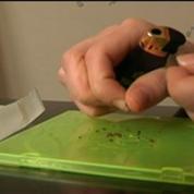 Cannabis : la prévention n'est pas suffisante, assure l'addictologue JP. Couteron