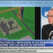 Culture Geek: L'impression 3D, une révolution en marche
