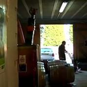Un viticulteur bio au tribunal pour avoir refusé d'utiliser des pesticides