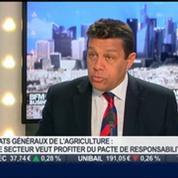 Xavier Beulin, FNSEA, dans L'Invité de BFM Business