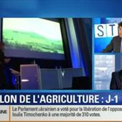BFM Story: J-1 avant le salon de l'agriculture: quel est l'état de santé du secteur agricole en France ?