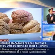Cuisinez-moi: Le macaron de Réau –