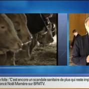 BFM Story: Vache folle: une crise pour rien ?