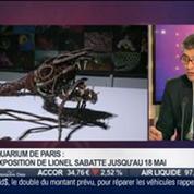 La sortie du jour: L'exposition Fabrique des Profondeurs à l'Aquarium de Paris, dans Paris est à vous –