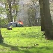 Au milieu d'un parc à lions, la voiture d'une famille prend feu