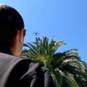 Des drones pour sauver les palmiers du Sud-Est