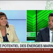 Le potentiel des énergies marines: Arnaud Gossement, François Piquet et Alexis Jourdain, dans Green Business – 1/4