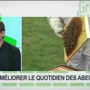 Améliorer le quotidien des abeilles: Antoine Poupart, Dominique Tristant et Patricia Laurent, dans Green Business – 3/4