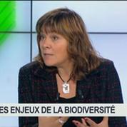 Les enjeux de la biodiversité: Florence Guillaume, dans Green Business 5/5