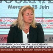 Louis Schweitzer, commissaire général à l'investissement, dans Le Grand Journal 3/4