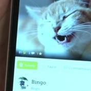 Yummypets : Le réseau social pour animaux (test appli smartphone)