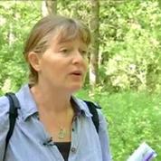 Cent ans de la Grande Guerre: une promenade mémoire dans l'Oise