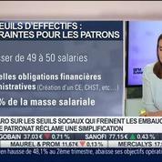 Delphine Liou: Seuils en entreprises: quels sont les enjeux des négociations à venir ?
