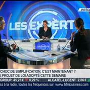 Delphine Liou : Les experts 2/2