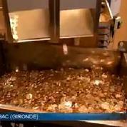 Les pièces de monnaies étrangères made in France