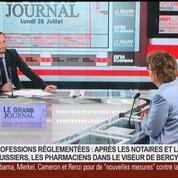 Isabelle Adenot, présidente du Conseil national de l'Ordre des pharmaciens, dans Le Grand Journal 1/7