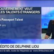 Delphine Liou: Le gouvernement veut attirer les talents étrangers –