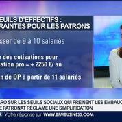 Delphine Liou: Les seuils sociaux freinent-ils la création d'emploi ?