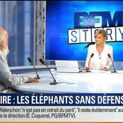 BFM Story: Trafic de l'ivoire en hausse, les éléphants sans défense –