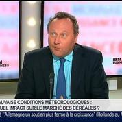 Michel Portier, directeur d'Agritel, dans Le Grand Journal 2/7