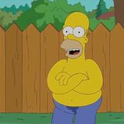 Homer Simpson fait son Ice Bucket Challenge (et ça finit mal)