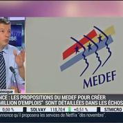 Nicolas Doze: Le plan choc du Medef pour relancer l'économie: les portées et limites –