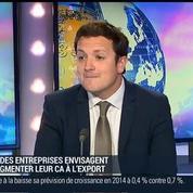 Euler Hermès: un assureur-crédit classique spécialisé dans le domaine de l'exportation: Ludovic Subran –