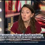 Ecotaxes, autoroutes, vignettes: quelle fiscalité écologique ?: Karine Berger, Jean-Hervé Lorenzi, Patrick Artus et Emmanuel Lechypre –