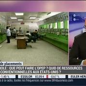 Matières premières: Comment expliquer la chute du prix du pétrole?: Frédéric Lasserre –