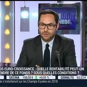 Quid des fonds euro-croissance ?: Vincent Cudkowicz