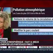 La tendance du moment: La qualité de l'air en Ile-de-France devient-elle dangereuse ?