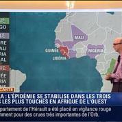 Harold à la carte: Ebola: l'épidémie se stabilise en Afrique de l'Ouest