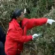 La Londe-Les-Maures et Hyères se mobilisent pour retrouver le corps d'une fillette disparue