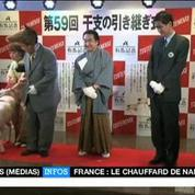 Les Japonais célèbrent l'année du mouton... déguisés en animaux