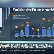 Biotechs: Quel est le bilan pour l'année 2014?: Pierre-Olivier Goineau –