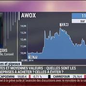 Pourquoi faut-il suivre le cours de l'action Awox ?: Charles François