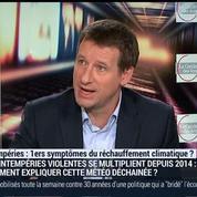Le dérèglement climatique est-il incontournable?: Yannick Jadot, Patrice Geoffron, Bertrand Jacquillat et Emmanuel Lechypre (1/3)