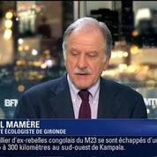 News & Compagnie: Noël Mamère et Frank Tapiro (2/2)