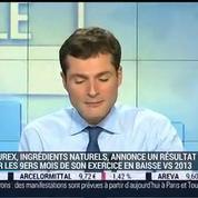 Naturex: résultats en forte baisse sur neuf mois: Thierry Lambert