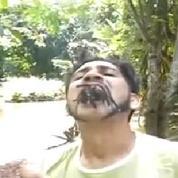 Il se met des tarentules dans la bouche contre la déforestation...