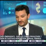 Marchés émergents: qui sont les gagnants et les perdants de la baisse des prix du pétrole ?: Gustavo Horenstein